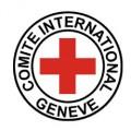 ICRC-copy