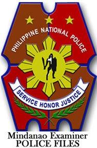 PNP-2-copy